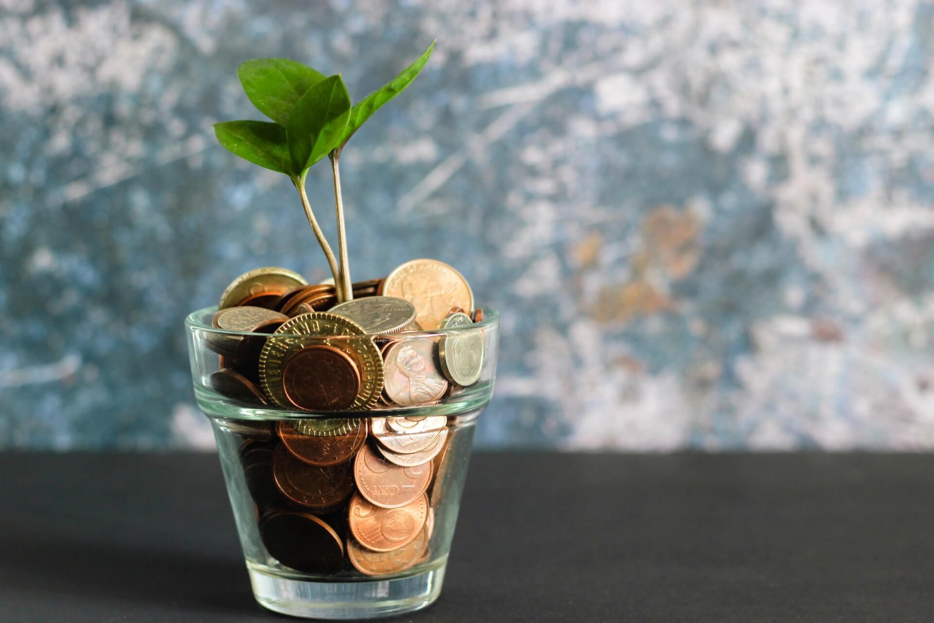 investitie psiholog palatul mintii